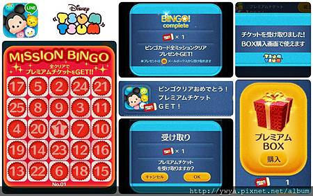 Bingo #1 complete