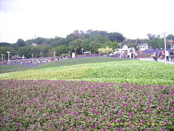 台北花博 (10).jpg