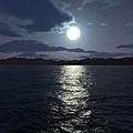 moonlight_230.jpg