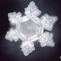 Emoto%20Water%20Crystal%20for%20Global%20Love%20Day%2007.jpg