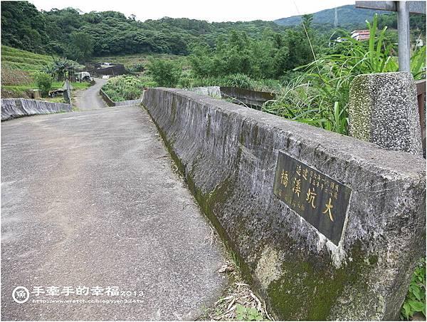 三芝桐花130502004