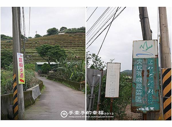 三芝桐花130502011