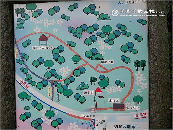 桐花公園130426004