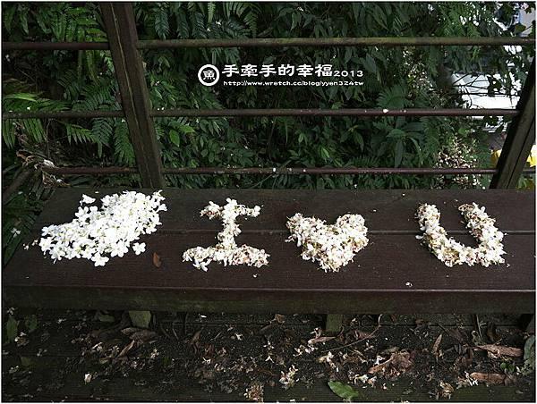 桐花公園130426006