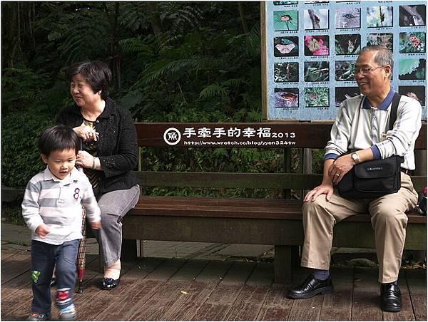 桐花公園130426010