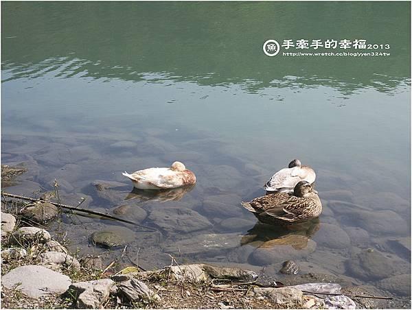 梅花湖130308005