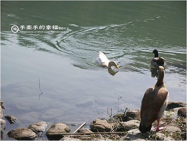 梅花湖130308006