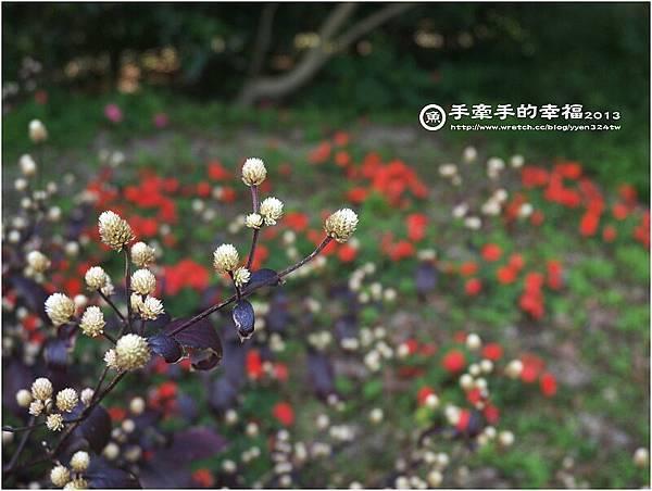 納美花園130218001