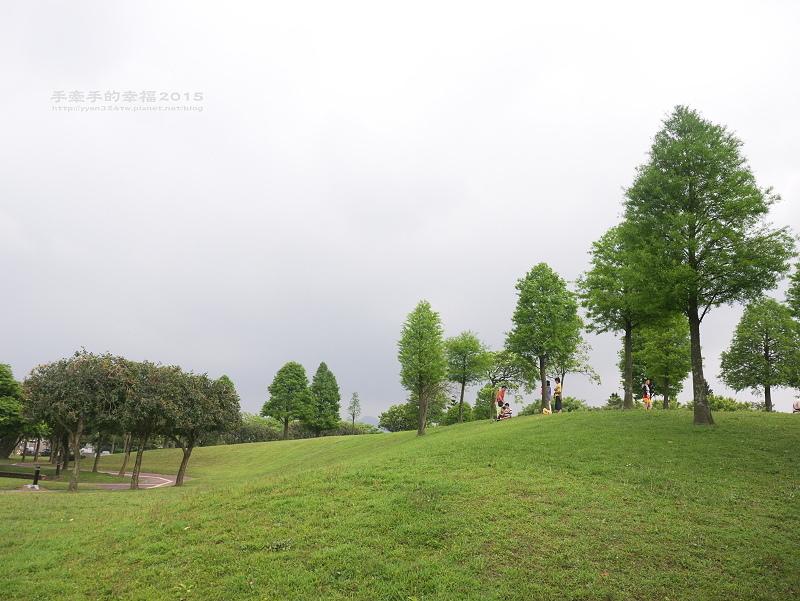 埔頂公園140419008