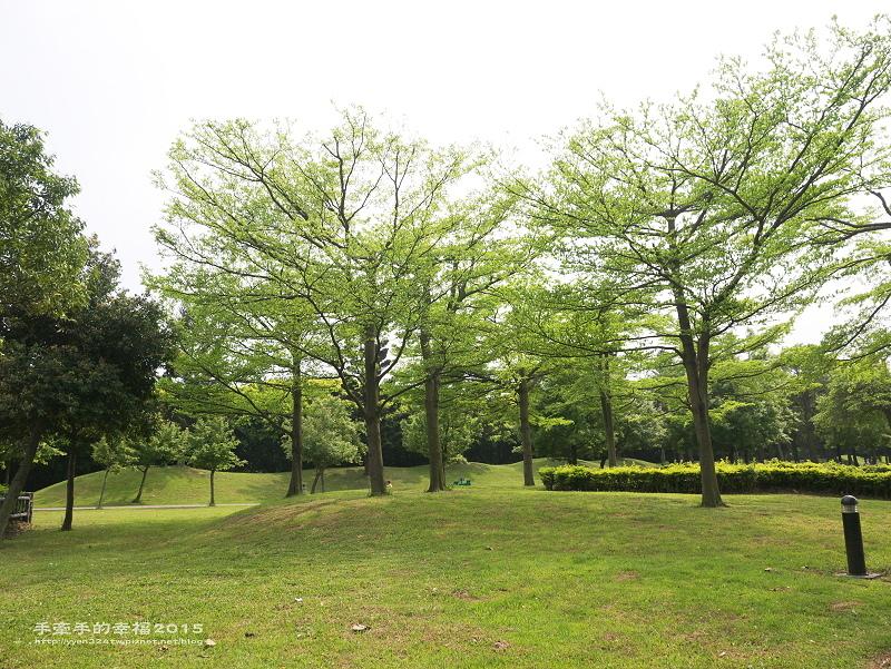 埔頂公園140419029