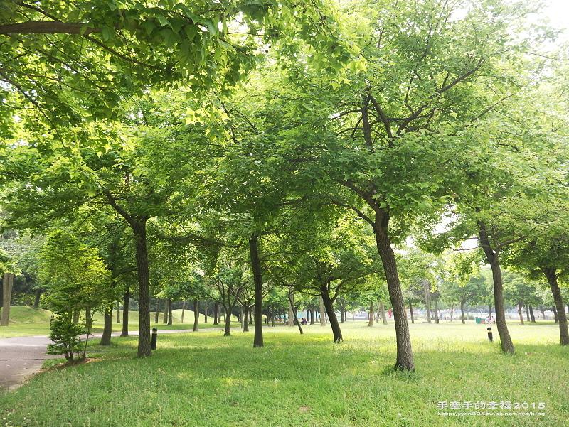 埔頂公園140419032