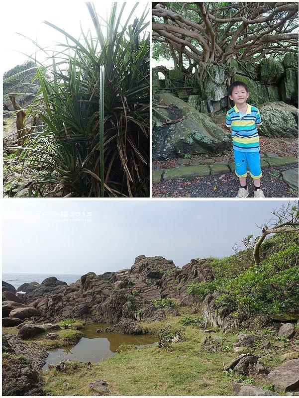 東森海洋150502057
