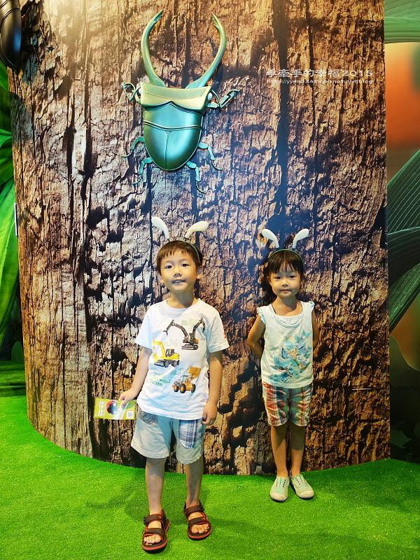 Fun大森林150701004