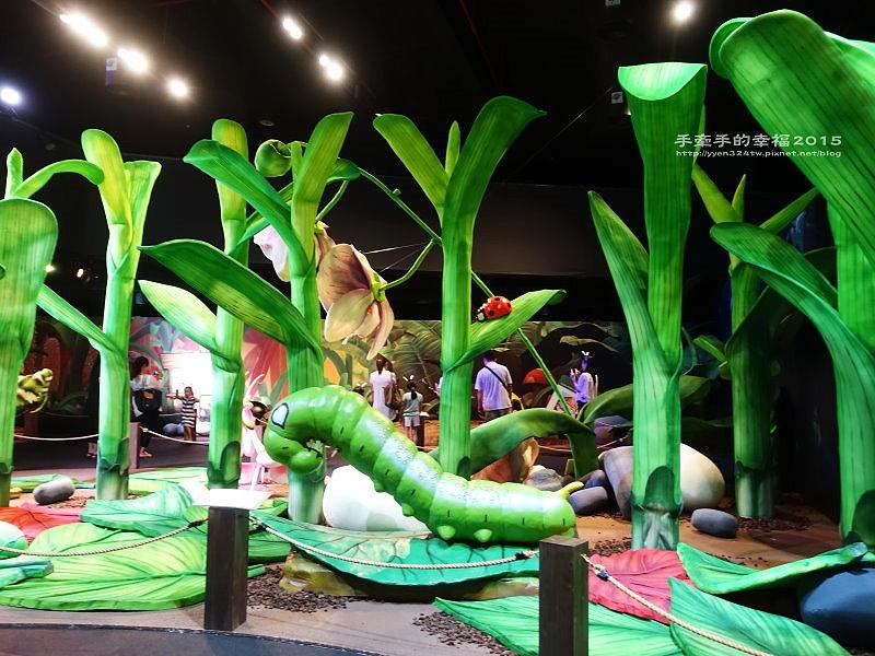 Fun大森林150701008