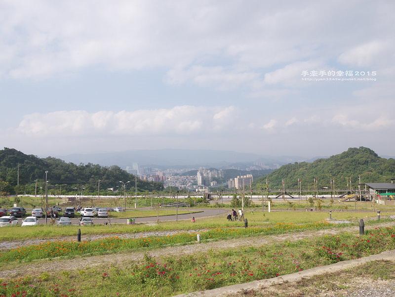 山水綠141018005