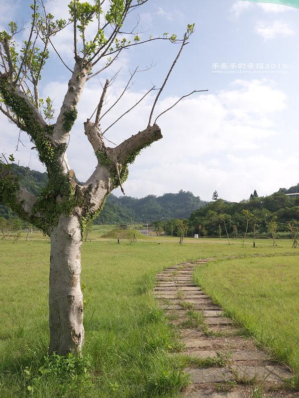山水綠141018017