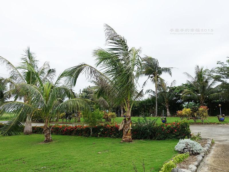 椰林之家150719042