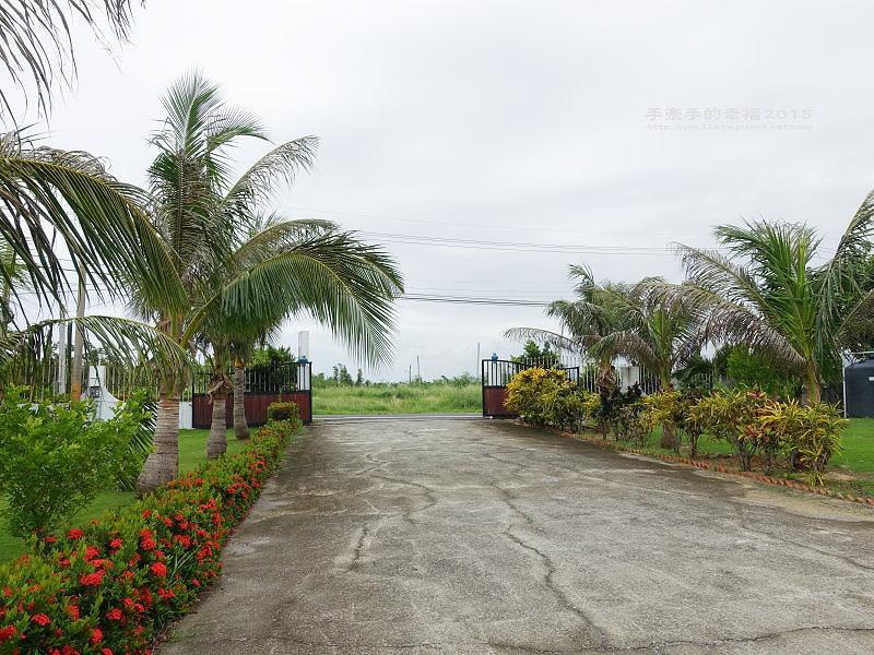 椰林之家150719043