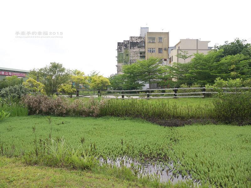 保健植物園140419027