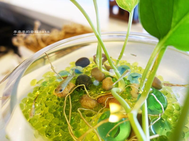 棠楓咖啡食堂150925026