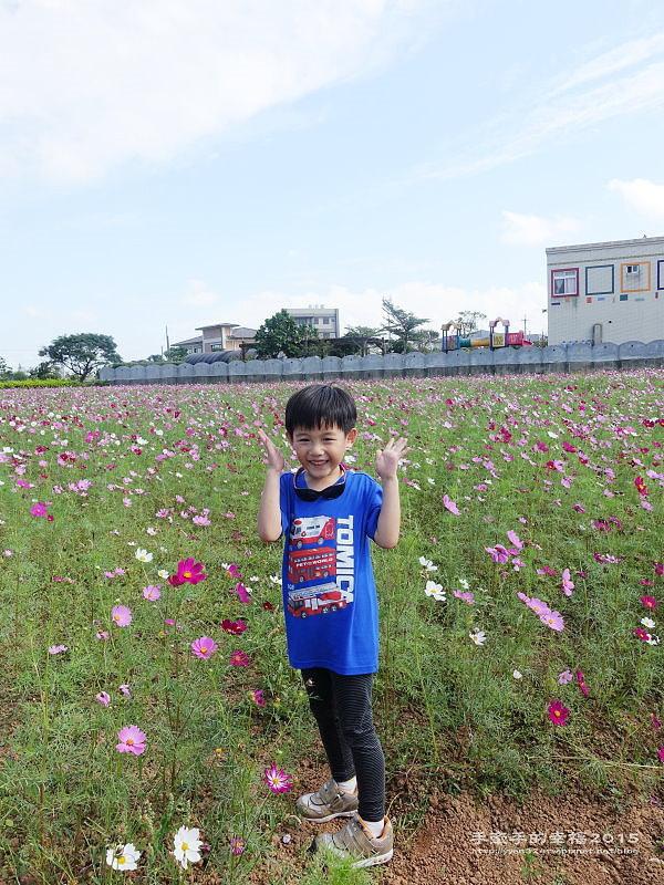溪海花卉151122007