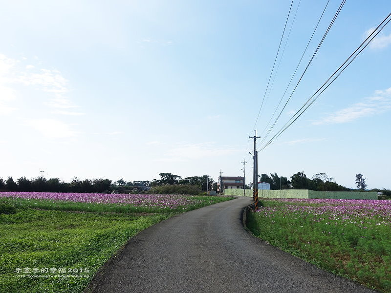 溪海花卉151122012