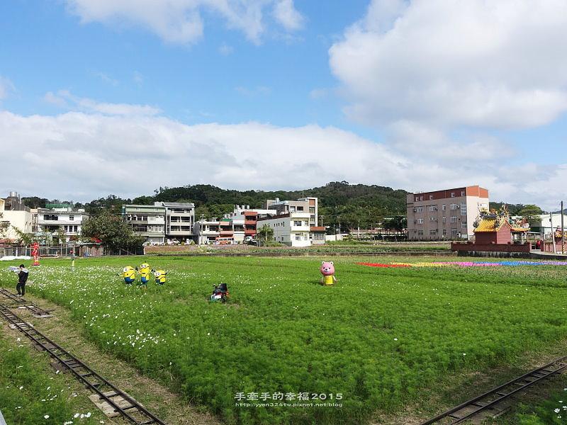 蘆竹花海151219002