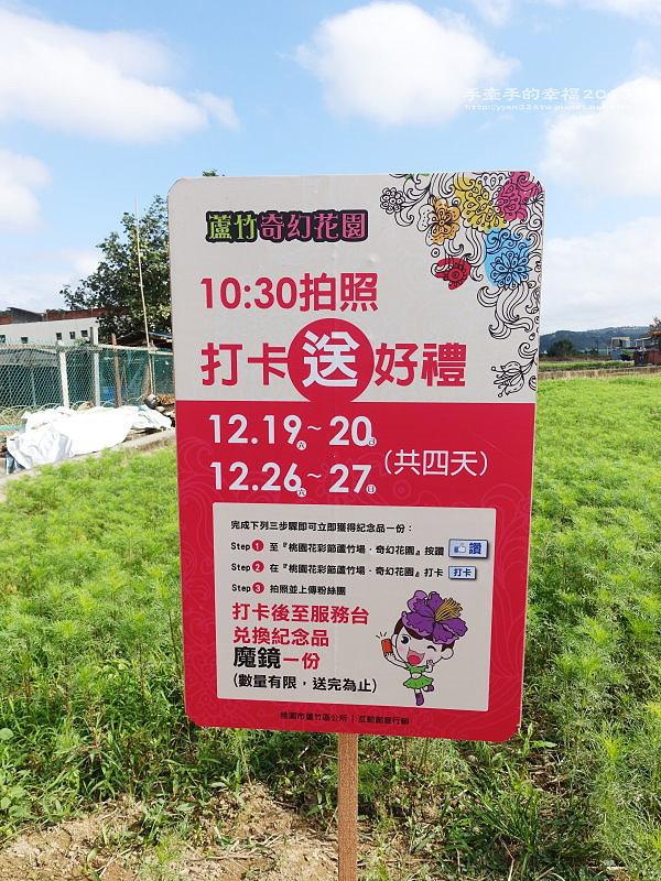 蘆竹花海151219015