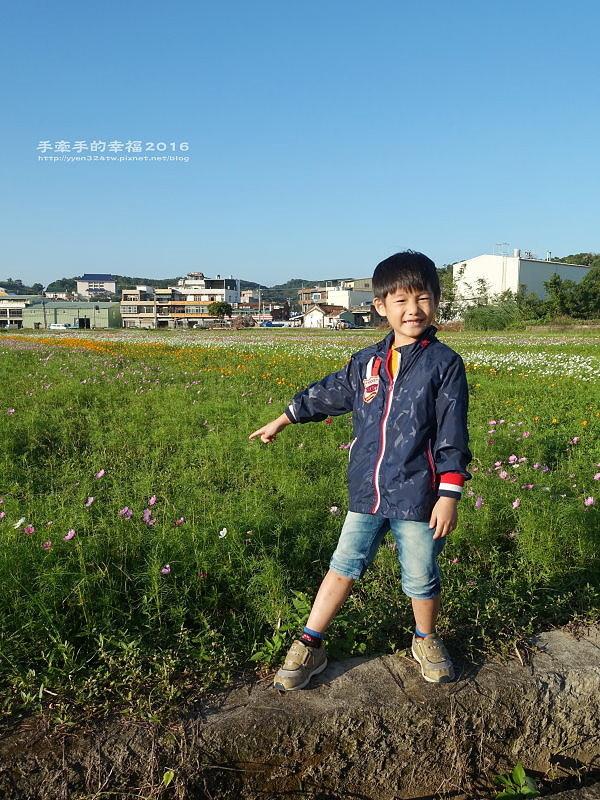 2016桃園花彩節蘆竹場161111010