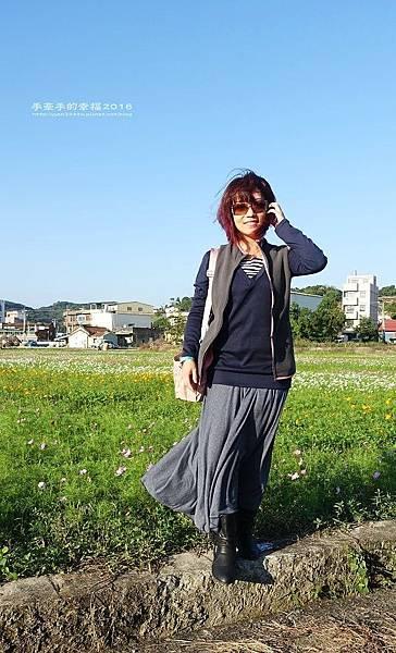 2016桃園花彩節蘆竹場161111011