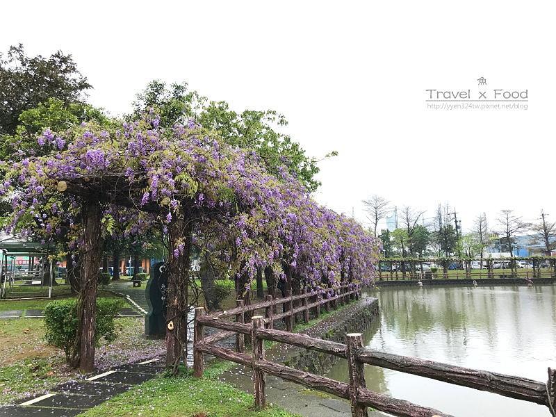 大湖公園紫藤花170411002