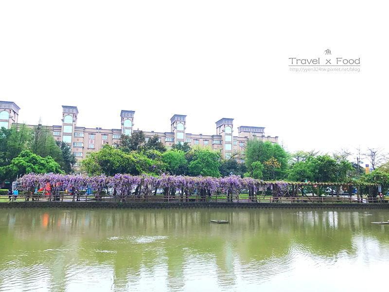 大湖公園紫藤花170411016