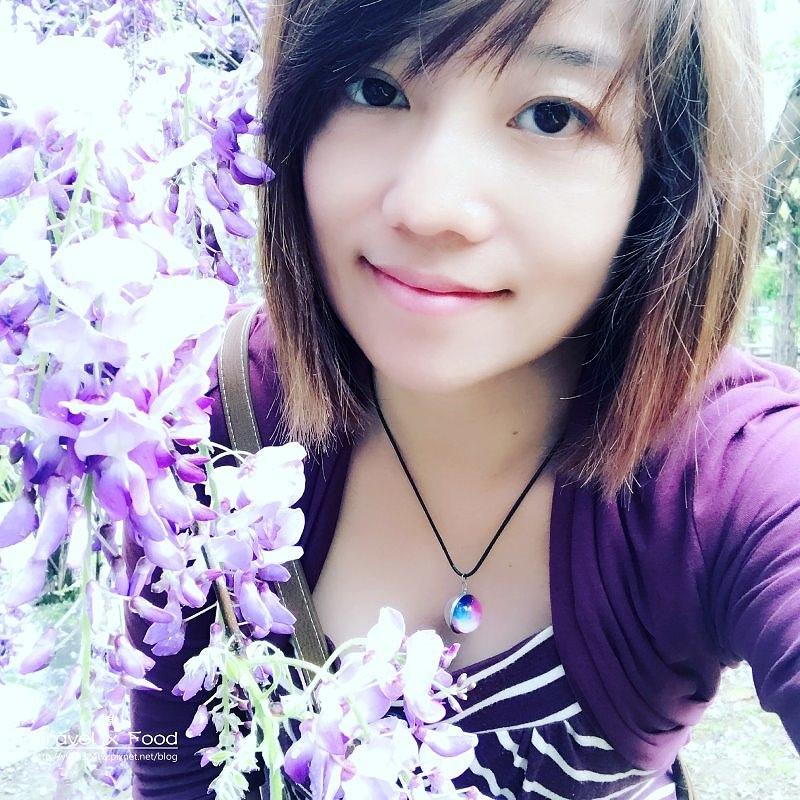 大湖公園紫藤花170411022