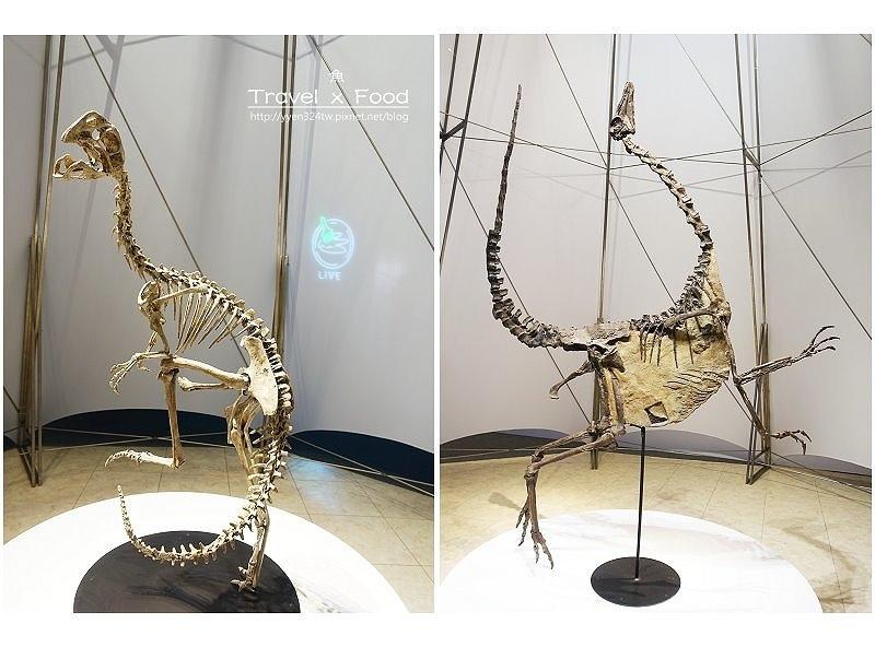 恐龍實驗室170630010