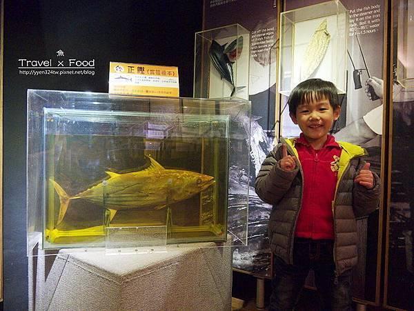 柴魚博物館150110007