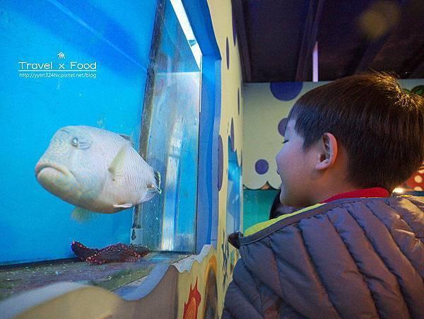 柴魚博物館150110017