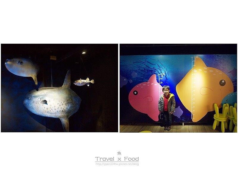 柴魚博物館150110029