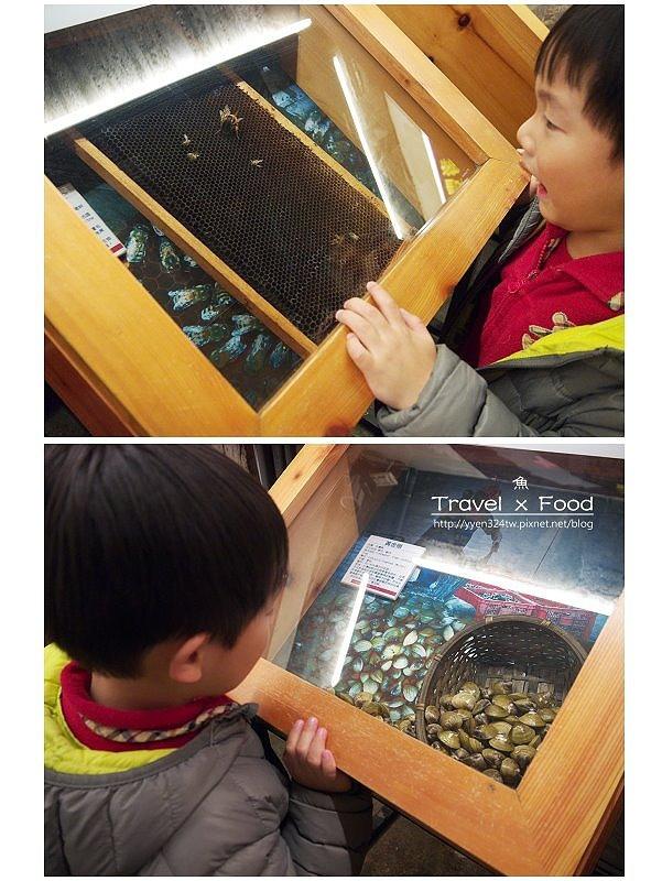 柴魚博物館150110030