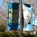 好期待 要看到北極熊啦.JPG