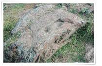 來源:交通部觀光局澎湖國家風景區管理處 望安天台山呂洞賓腳印