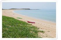 來源:交通部觀光局澎湖國家風景區管理處 望安網垵口沙灘