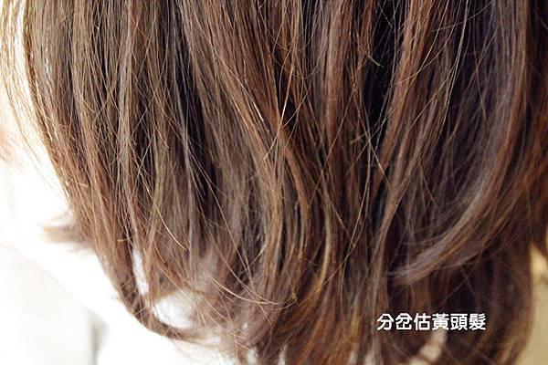 CINCO二店 美髮 士林美髮 台北美髮 (8)_副本.jpg
