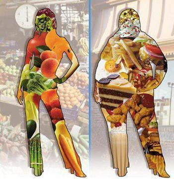 你吃的食物,造就你的身材