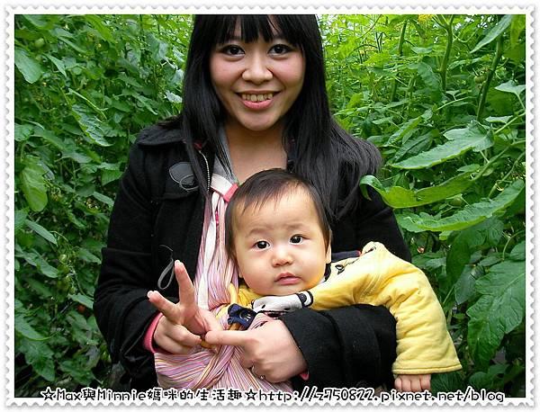 2012.1.24 新竹採蕃茄