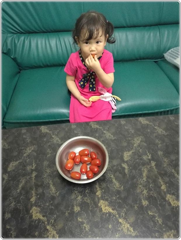 愛吃小蕃茄的小孫女1