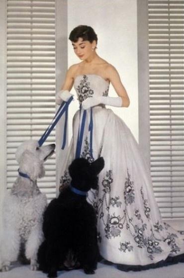 Givenchy  奧黛麗·赫本 1954