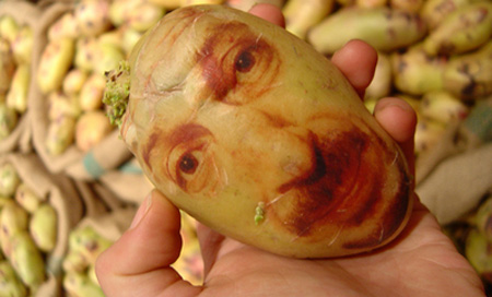 potatoportraits01.jpg