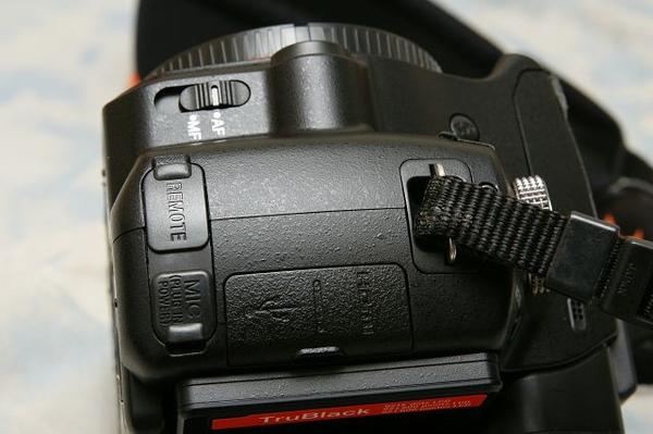 DSC09617.jpg
