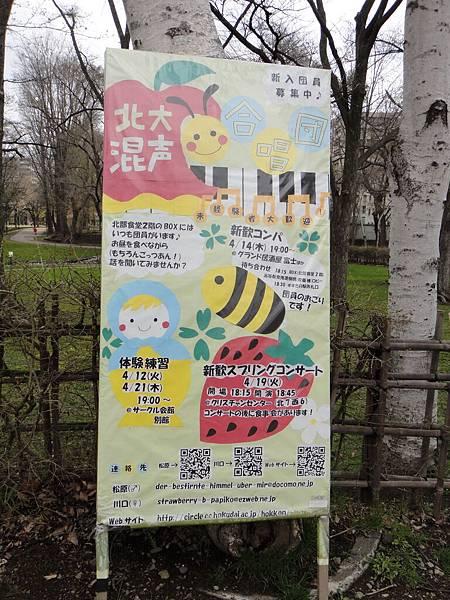 [北海道大學] 社團廣告-合唱團.JPG