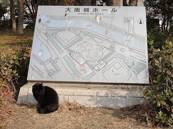 大阪城公園11.JPG
